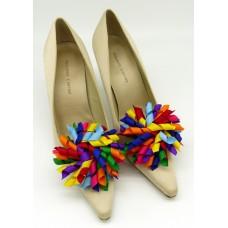 Patsy Shoe Clips - rainbow